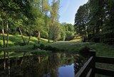 thumbnail - Rundwanderweg Sonneberg | Froschteich