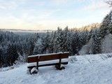 thumbnail - Winterwald bei Sebnitz