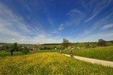 thumbnail - Wilchingen