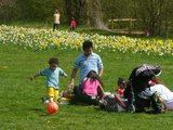 thumbnail - Familienspaß im Sommerhofenpark