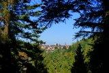 thumbnail - Ausblick von der Schöneck-Hütte auf Freudenstadt