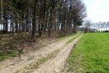 thumbnail - Wald und Wiesen wechseln sich auf diesem Wanderweg ab