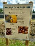 thumbnail - Informationstafel Bienenlehrpfad Freckenfeld