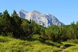 thumbnail - Das Plateau der Reiter Alm | Reiter Alpe