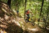 thumbnail - Biker auf Singletrail Tour 8