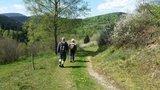 thumbnail - Wanderer auf der Haderholzroute