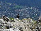 thumbnail - Am Gipfel eröffnet sich uns ein spektakulärer Ausblick auf Bad Reichenhall.