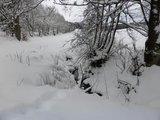 thumbnail - Winterwanderung in der Kuckucksuhle