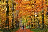 thumbnail - Wandern im Rodachtal