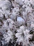 thumbnail - Winterimpressionen Seewald-Besenfeld