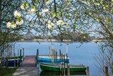 thumbnail - Frühling am Abtsdorfer See