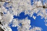 thumbnail - Winterhimmel