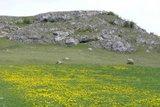thumbnail - Riegelsberg mit Ofnethöhlen