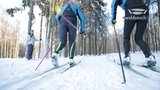 thumbnail - Skilanglaufgebiet Pastorenwiese Bad Berleburg HD