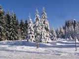 thumbnail - Thüringer Wald im Winter
