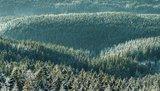 thumbnail - Winter Oben im Harz