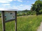 thumbnail - Aussicht auf Burg Vetzberg an einer Infotafel