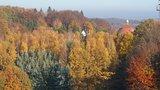 thumbnail - Im Hintergrund das Dach vom Kloster Ohrbeck