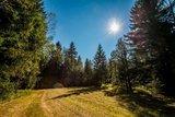thumbnail - Über Wiesen und durch Wälder im Chiemsee-Alpenland