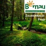 thumbnail - Bernau im Schwarzwald - Zauberwald-Pfad im Taubenmoos