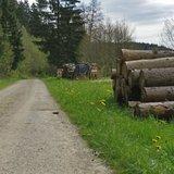 thumbnail - Wanderweg im Dammbachtal