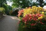 thumbnail - Albertpark vor dem Königlichen Kurhaus Bad Elster