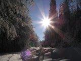 thumbnail - Winterwanderweg