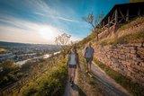 thumbnail - Etappe 4 von Erlenbach nach Klingenberg