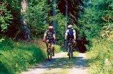 thumbnail - Radfahrer im Wald