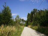 thumbnail - Unterwegs auf Feldwegen und Waldrouten.