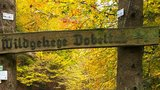 thumbnail - Wildgehege Dobeltal
