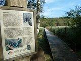 thumbnail - Rostocker Heide