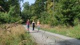 thumbnail - Entspanntes Wandern ohne Gepäck auf dem Elmkreisel