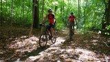 thumbnail - Trail ins Luttertal