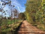 thumbnail - Eisenweg an der Tabakstanne in Thalheim