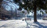 thumbnail - Winter am Radiborer Inselteich