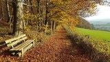 thumbnail - Herbst in Holzen