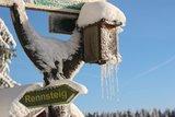 thumbnail - Rennsteig im Winter