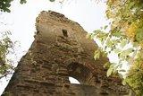 thumbnail - Ruine Speckfeld