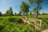 thumbnail - Struffelt Heide