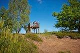 thumbnail - Gildehauser Venn Aussichtsturm