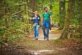 thumbnail - Waldweg im Bentheimer Wald