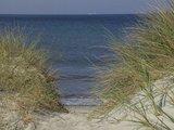 thumbnail - Hinter den mit Strandhafer bewachsenen Dünen: das weite Meer.