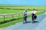 thumbnail - Radfahrer auf dem Deich