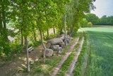 thumbnail - Das Großsteingrab in Hekese gehört zu den imposantesten Grabanlagen am Hünenweg