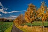 thumbnail - Ruhe und Idylle in südöstlichen Teil Rügens