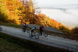 thumbnail - Moselhöhe im Herbst mit Mountainbiker in Aktion