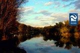 thumbnail - Herbstfärbung an der Saale bei Bernburg