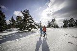 thumbnail - Wanderer auf dem Heersberg