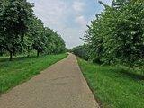 thumbnail - Radweg nach Zusenhofen